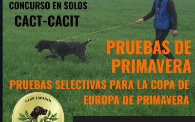 Pruebas de Primavera 2020 Andalucía. 5 y 6 de Febrero del 2020.