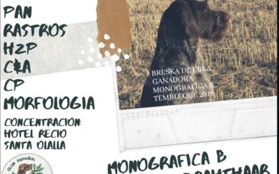 Monográfica B 2019. Santa Olalla (Toledo)