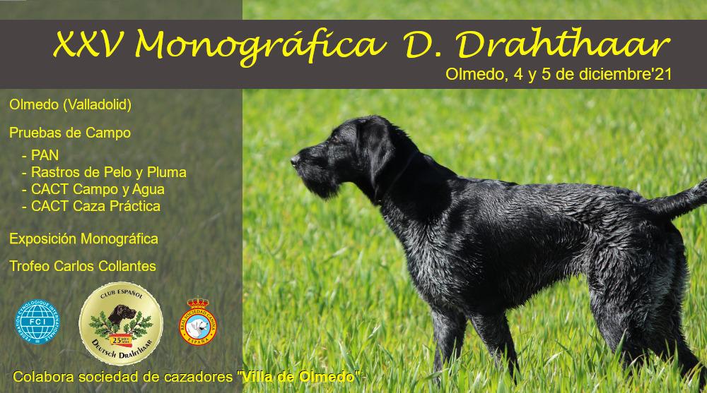 Monográfica 2021. Olmedo (Valladolid)